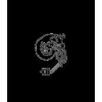 Glyph 50